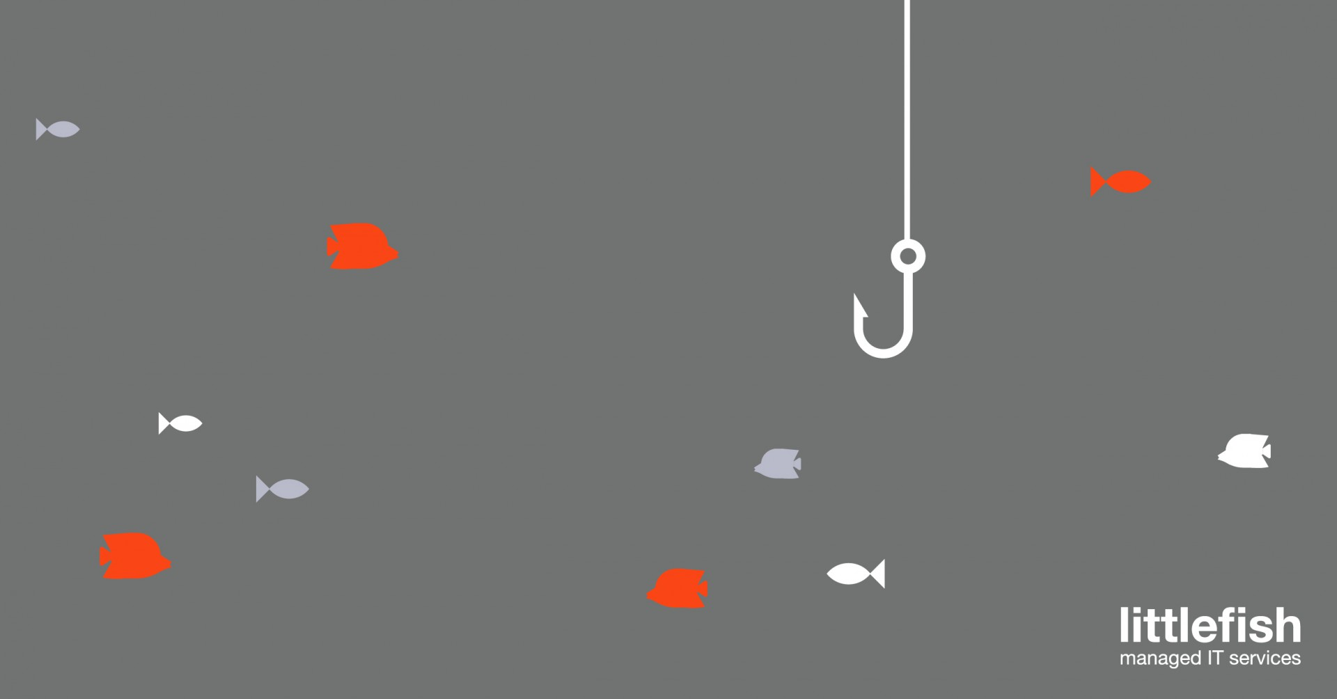 Littlefish User Education and Awareness training phishing graphic