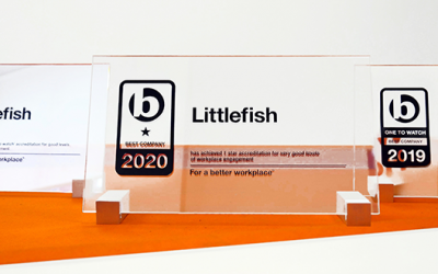 Littlefish awarded Best Companies 1* Star Accreditation