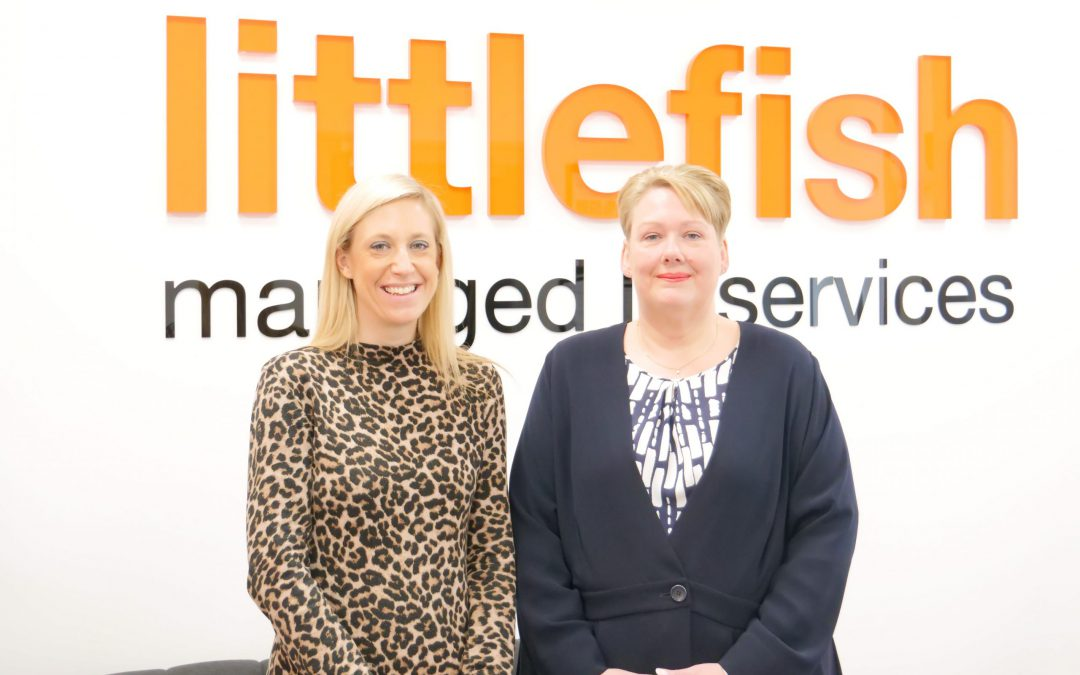 Littlefish Appoint Two New Members to Board